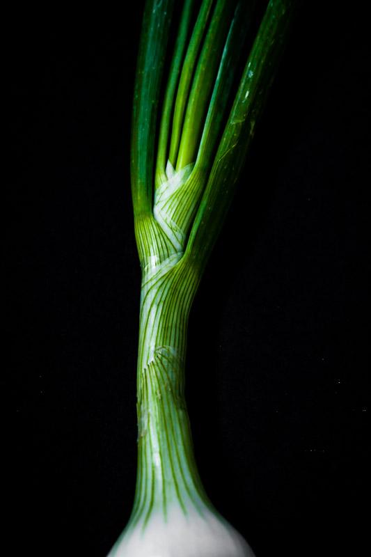 San Diego Food Photographer