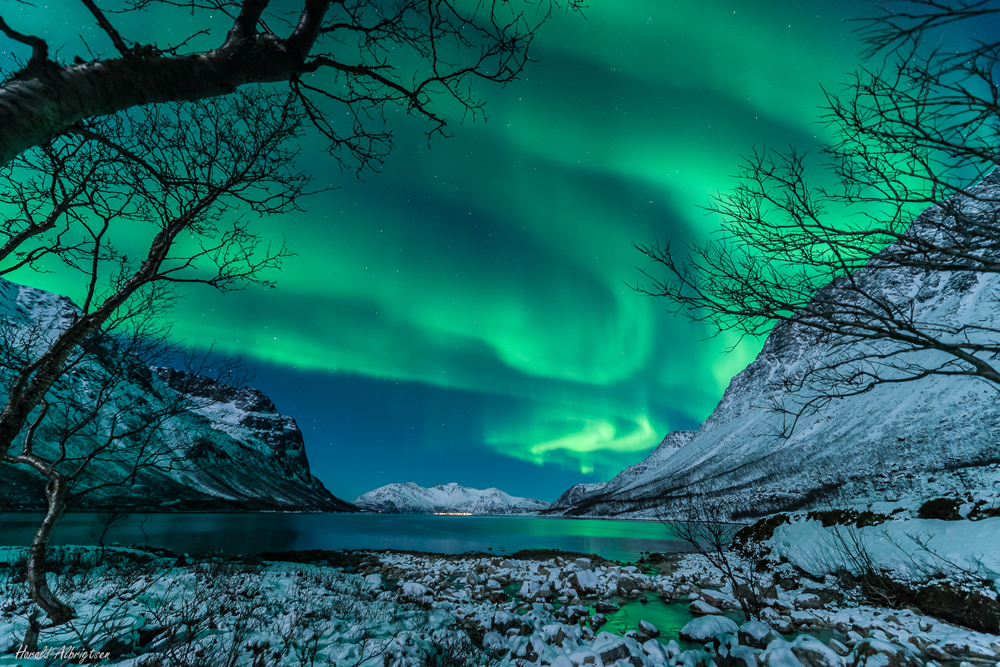 NOT my image, this time. A wonderful image by Photographer, Harald Albrigsten
