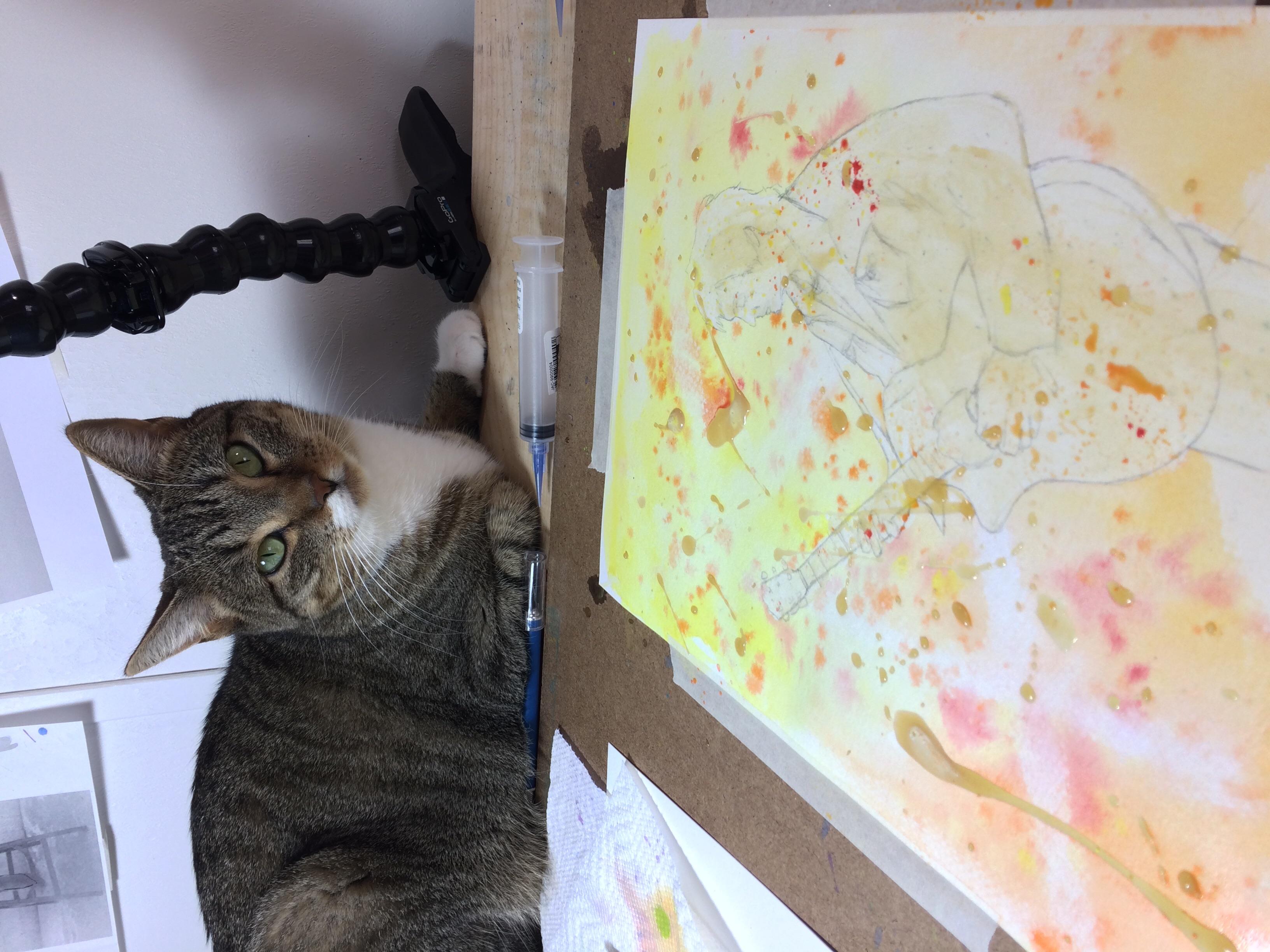 Studio Kitty!
