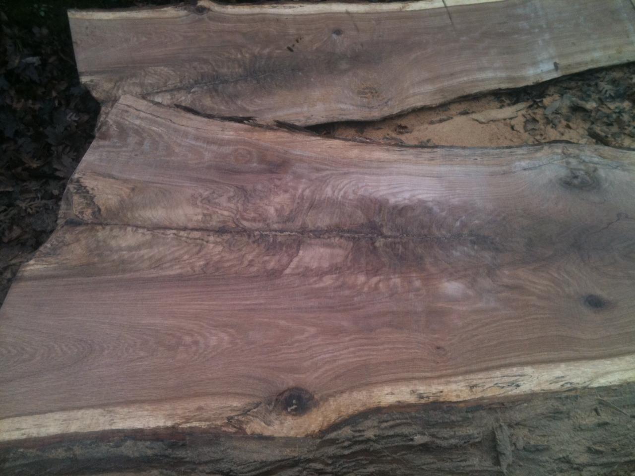 Live edge oak crotch