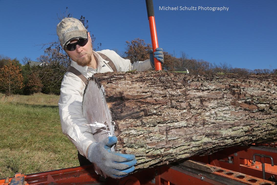 prepping black walnut log