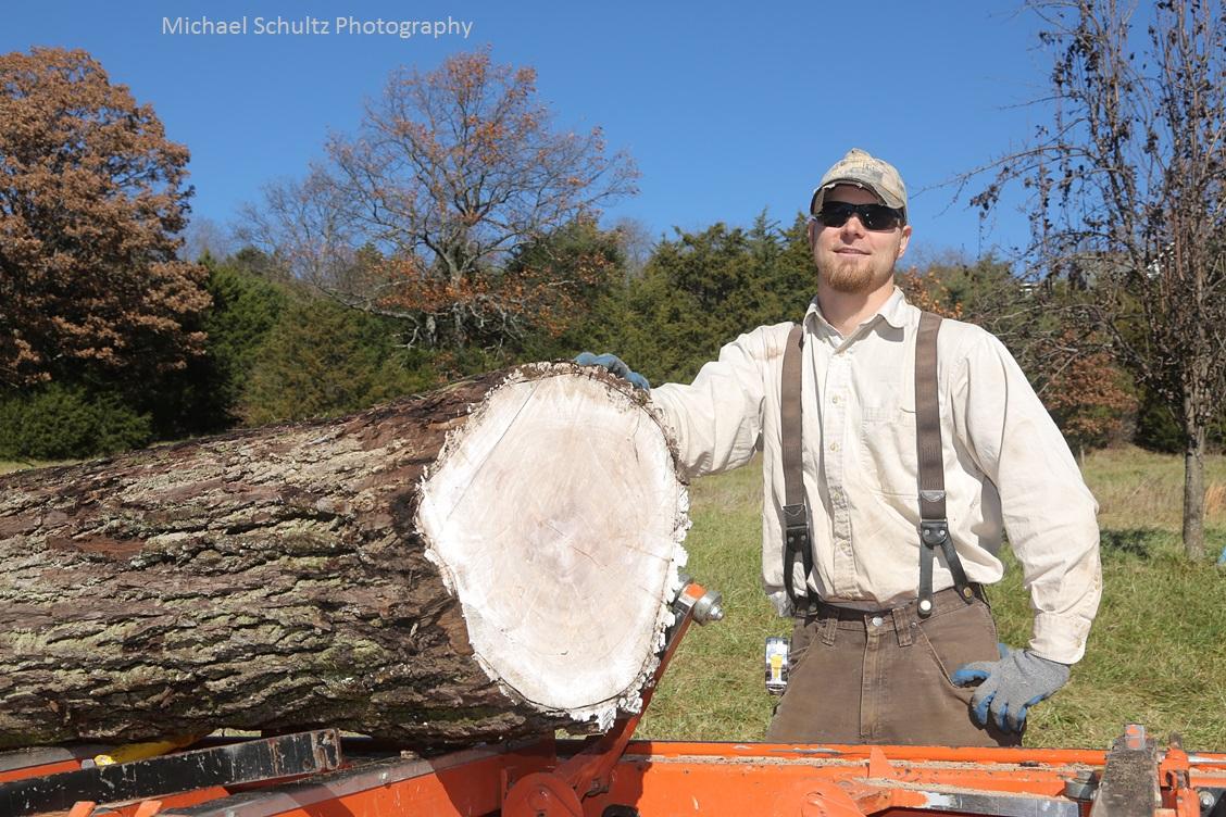 nice black walnut log