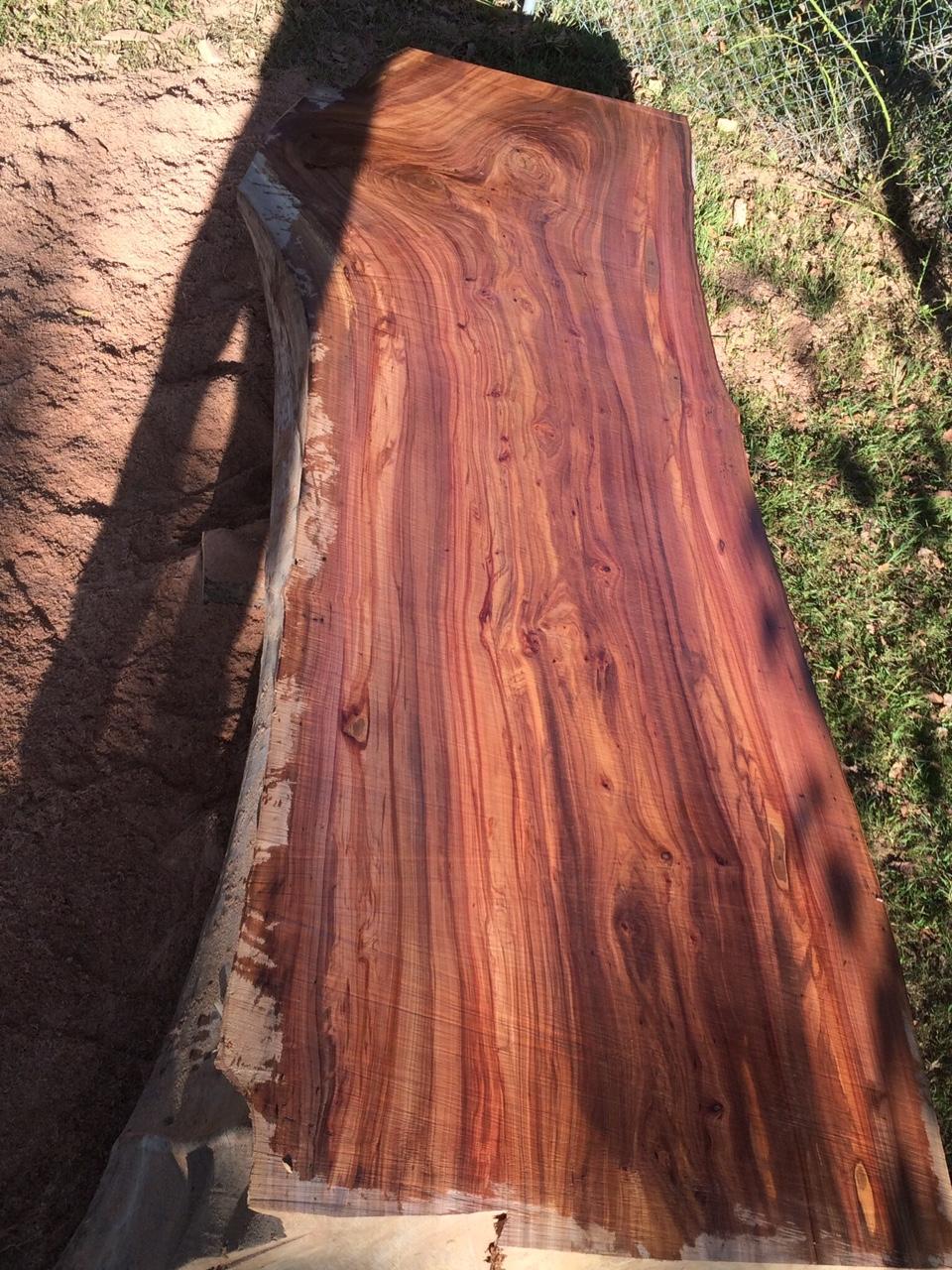 Live Edge Elm Wood Slab