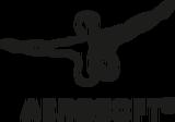 aerosoft_logo.png