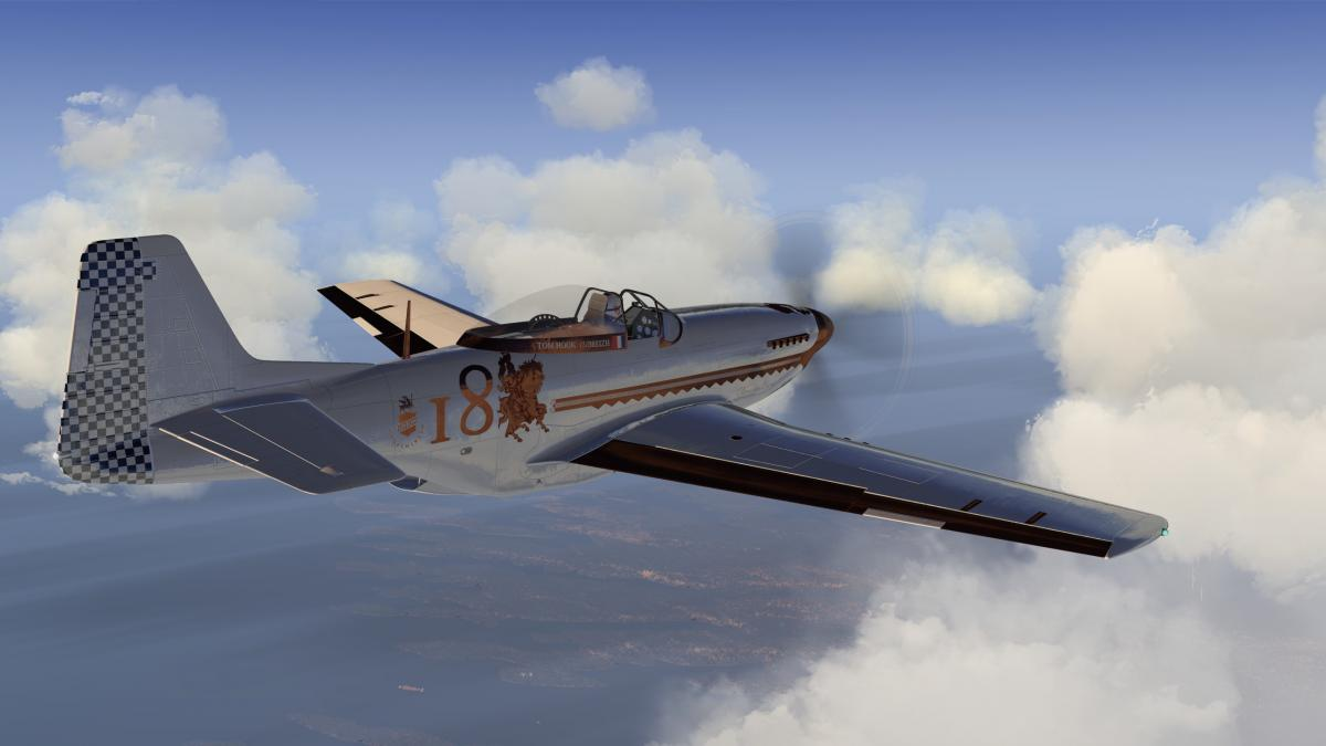 P-51D_63.jpg.36e7f424d0259e019bfa2c0d0b2efc3a.jpg