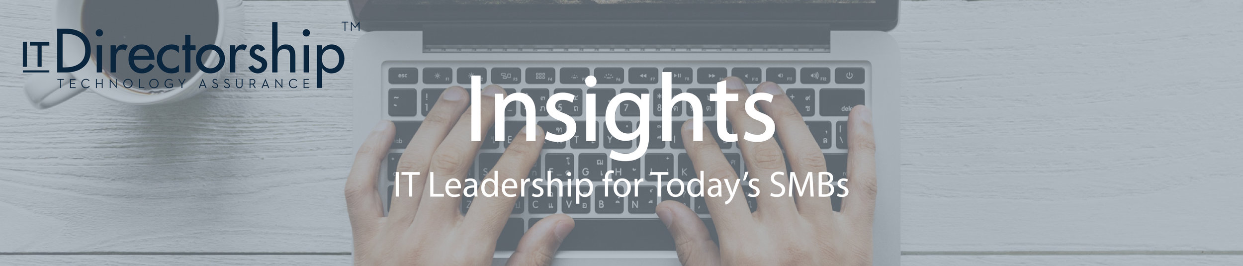 IT Directorship Insights