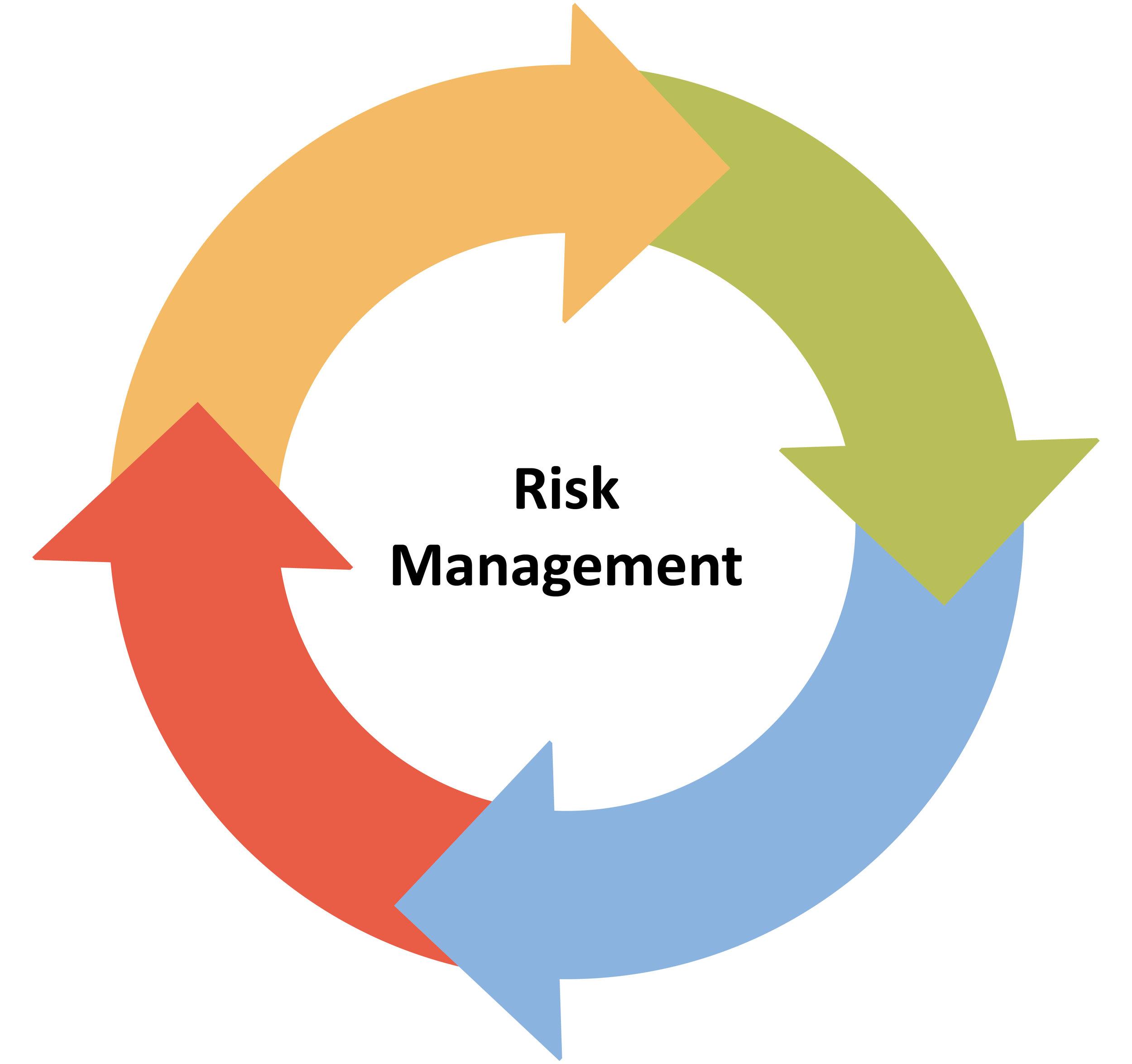 Cyber Risk Assessment Draft300.jpg