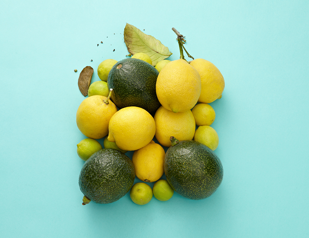 limon aguacates 008.jpg