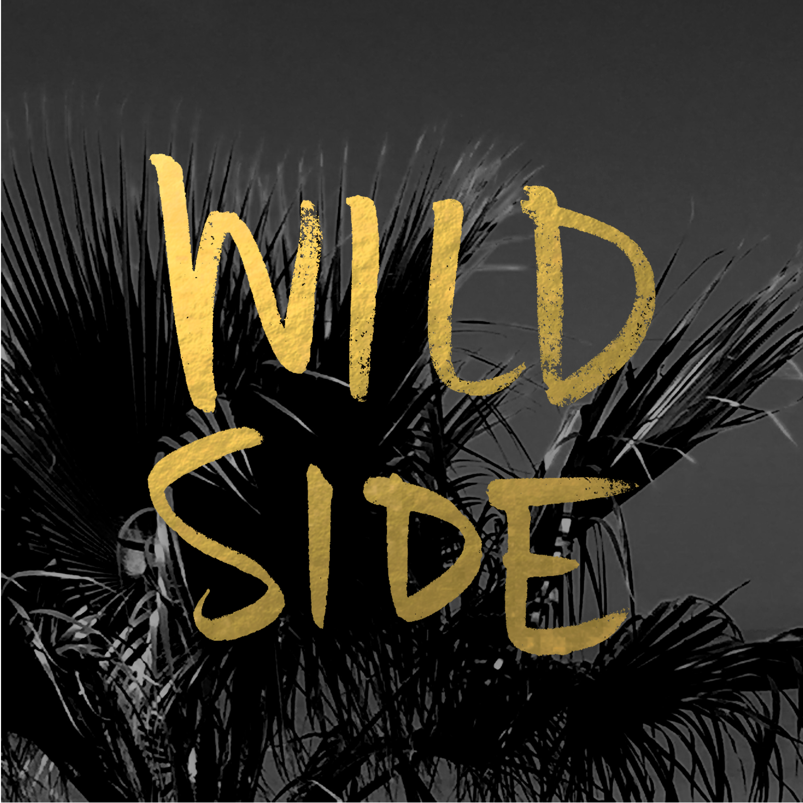 Wild Side.png