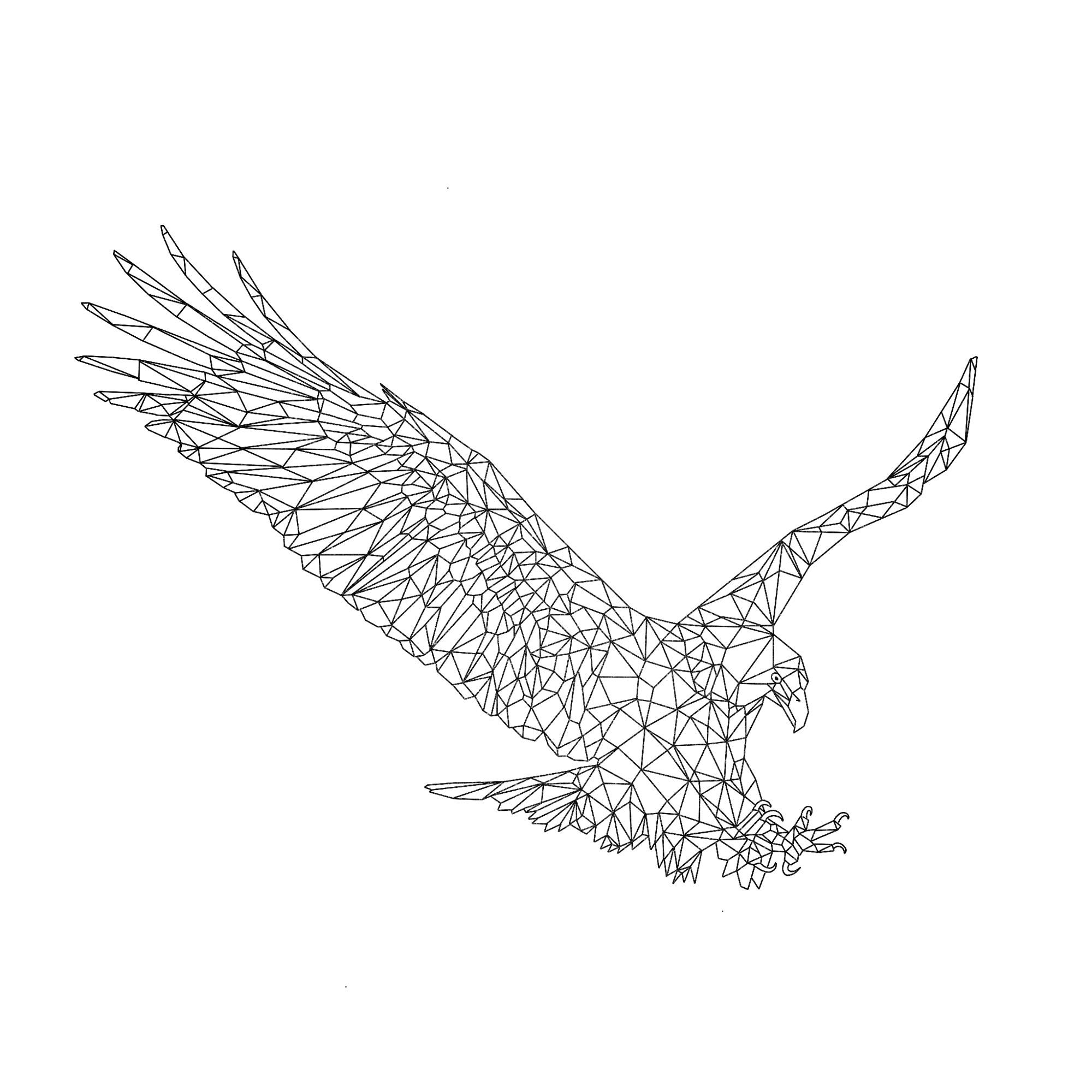 Eagle edited BLACK 1.jpg