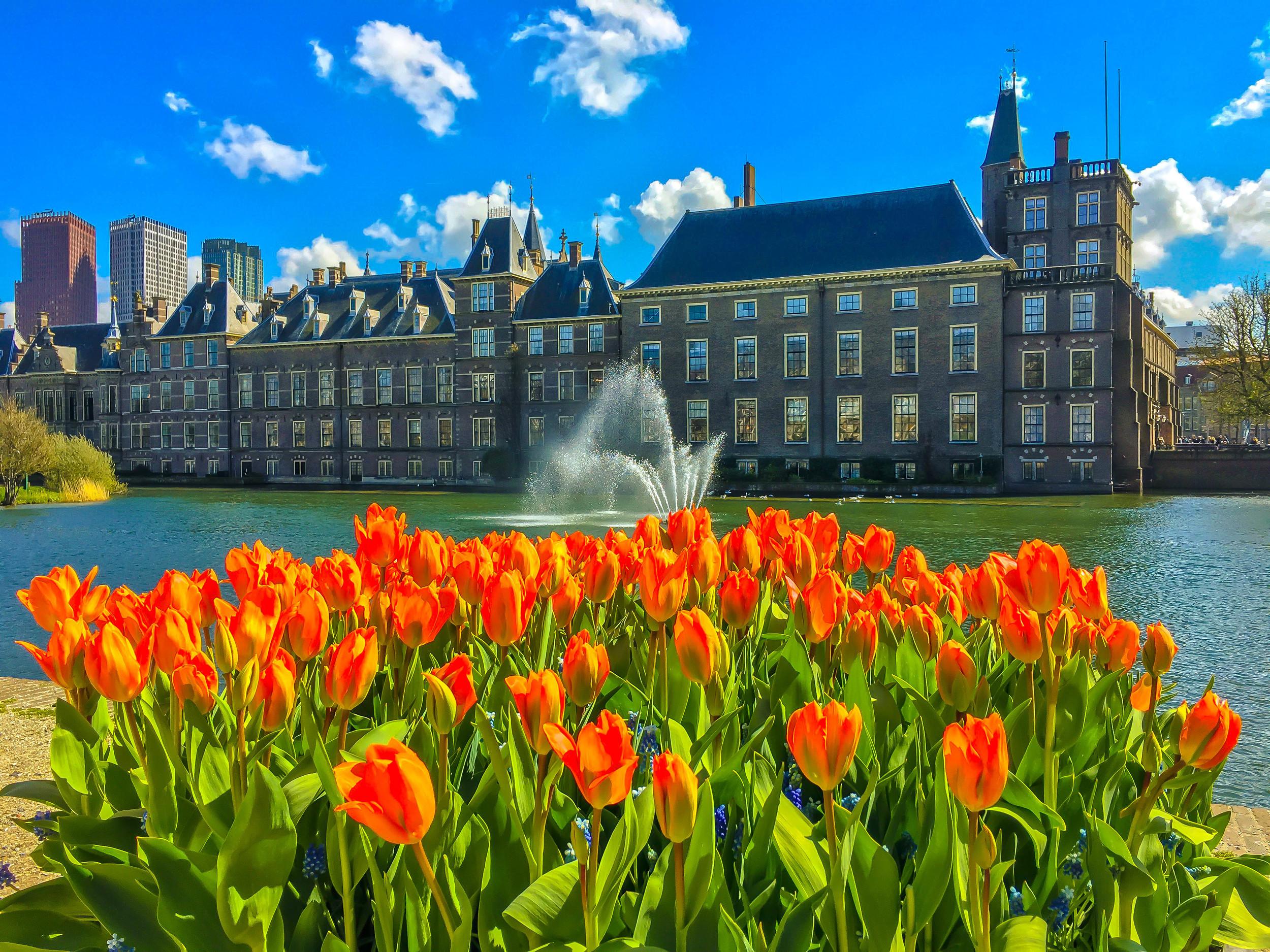 Quintessential Netherlands. Den Haag.