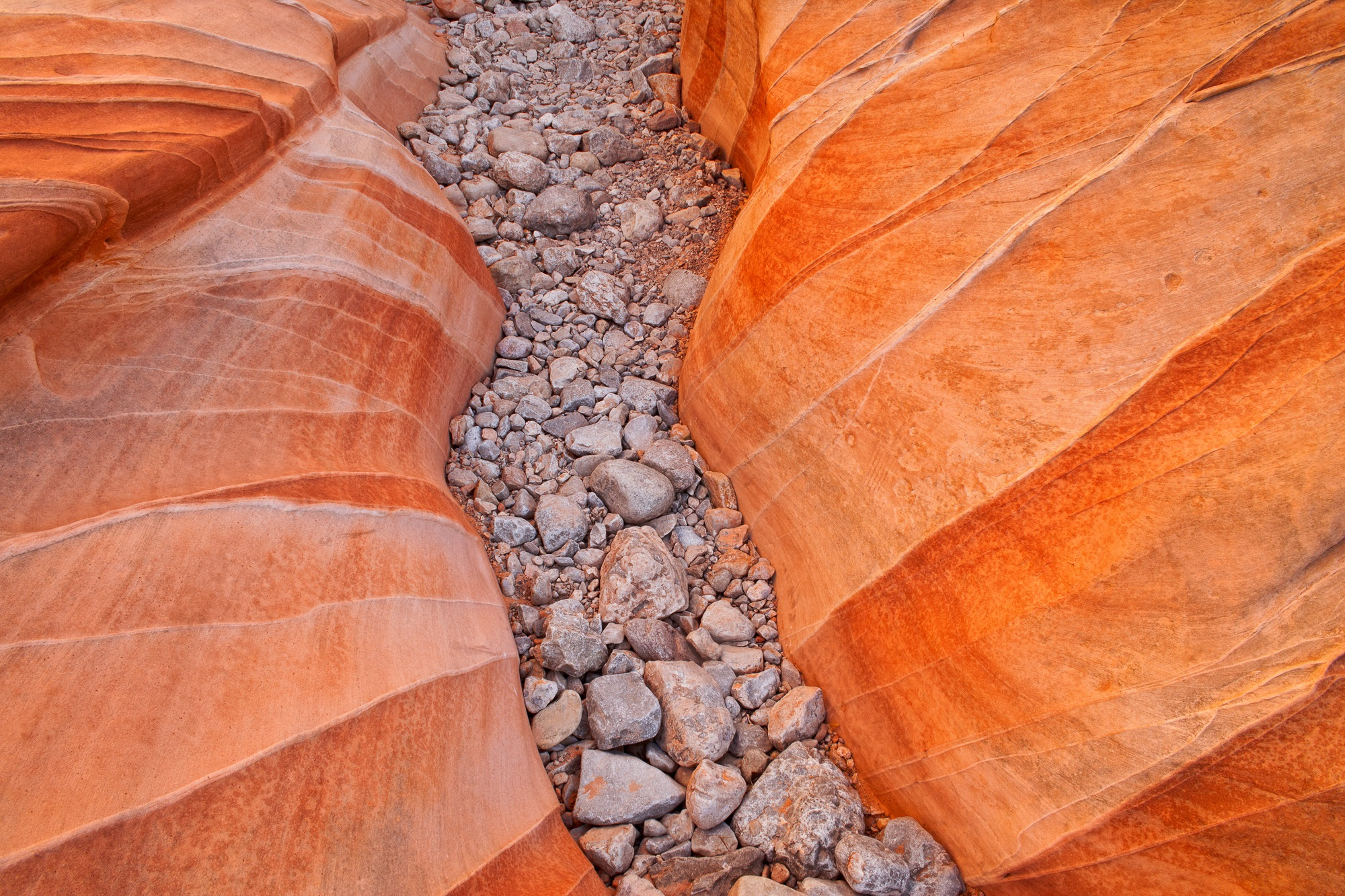 Detail of Slot Canyon Floor, Valley of Fire State Park, Nevada