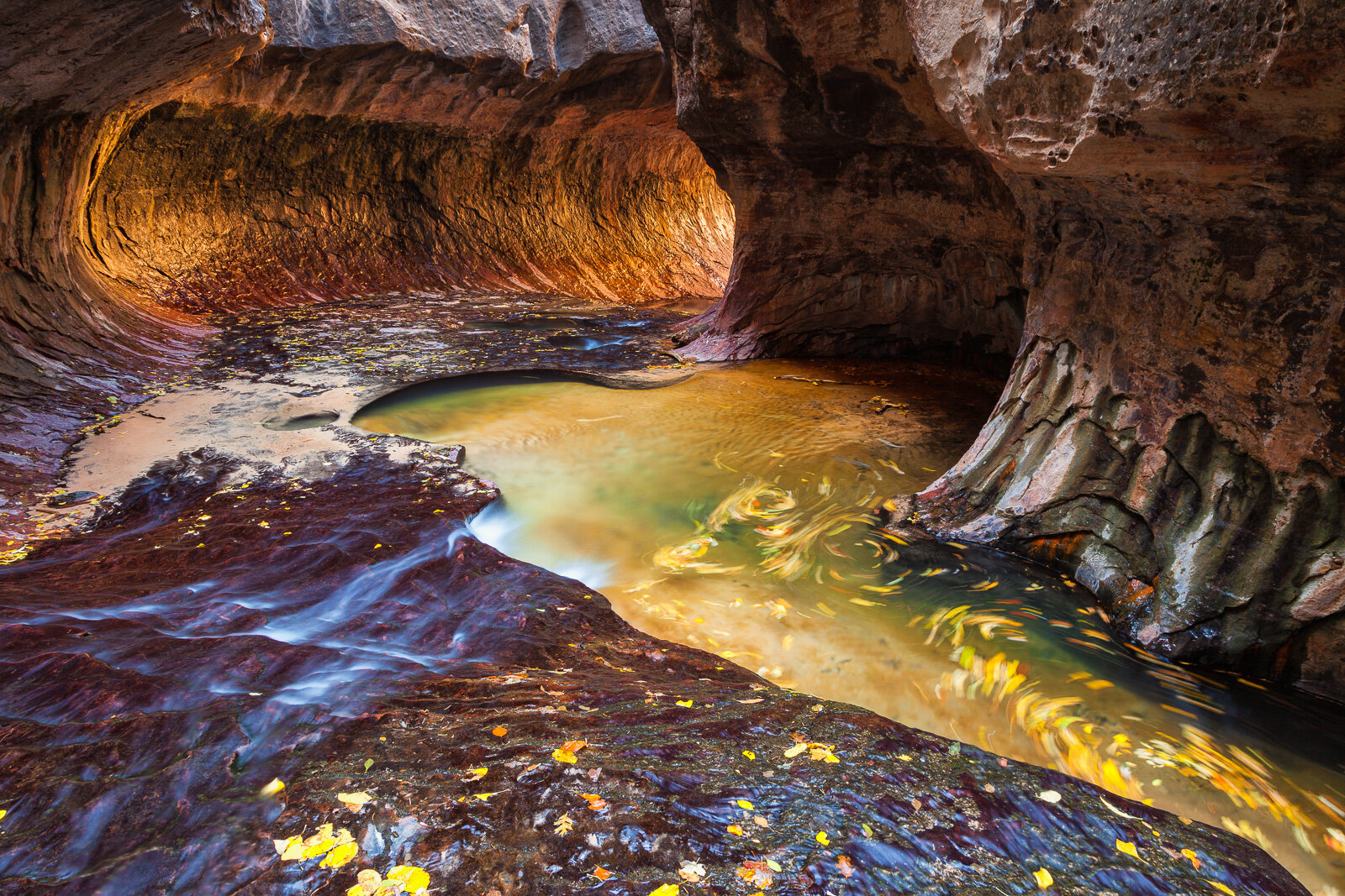 "Colorful leaves swirl in the cold waters of the Left Fork of North Creek as it flows through a section of canyon known as ""The Subway"" in Zion National Park near Springdale, Utah."