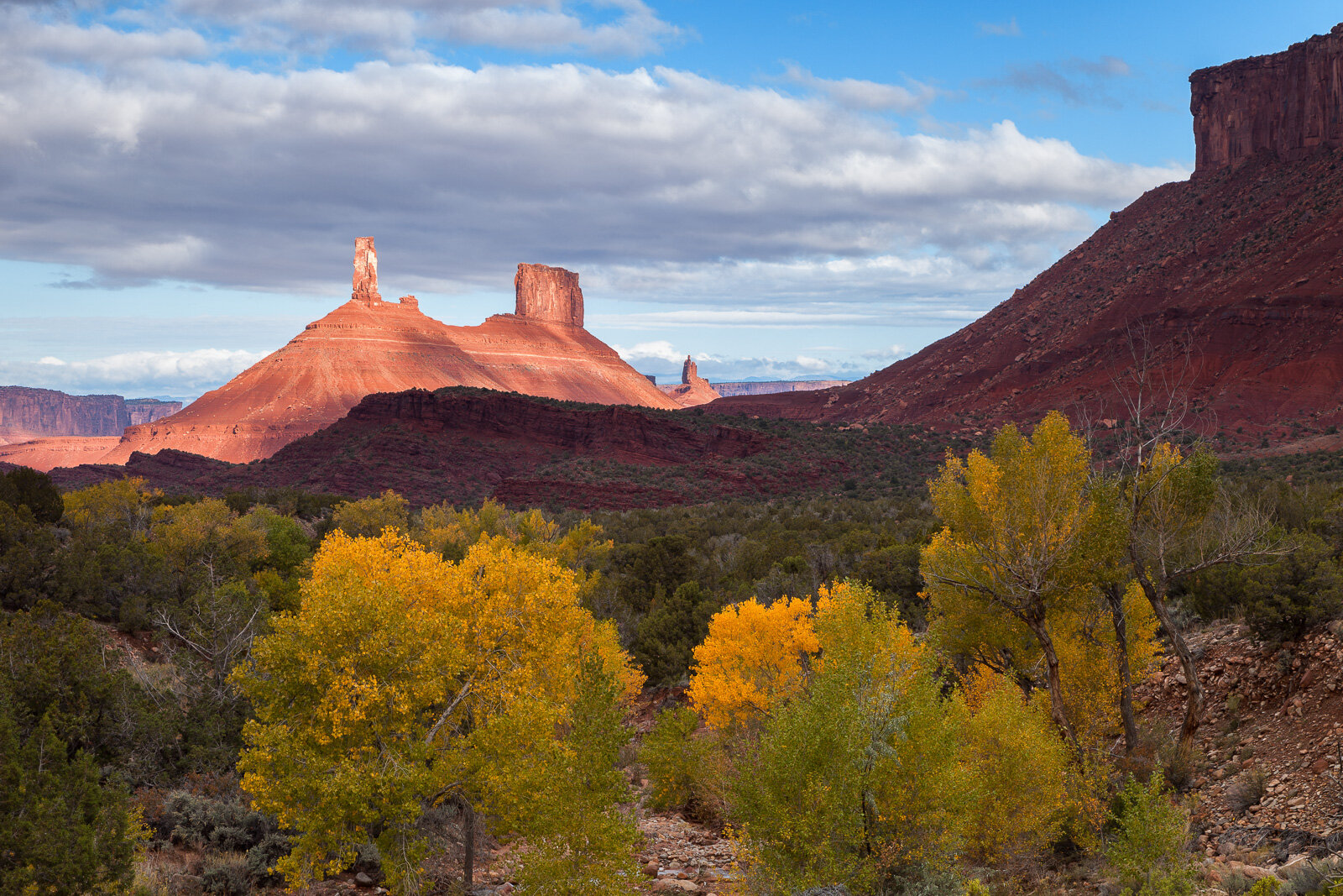 Cottonwood trees lining an unnamed creek show off the colors of fall below the iconic spires of Castleton Tower and the Priest and Nuns in Castle Valley, Utah.
