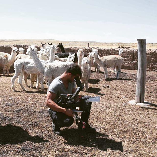 Knee deep in Alpaca poop (living the dream) No, really - living the dream!✨🐑🌄 ~ Espinar, Peru