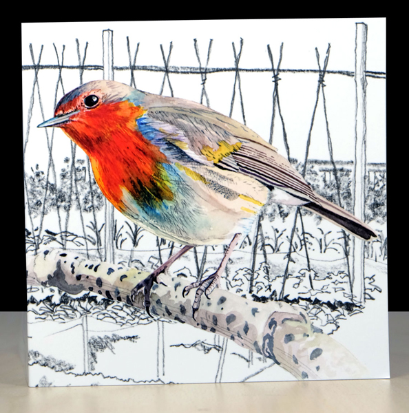 Watercolour  Robin, quality greeting card and envelope, suitable for any occasion.  Proudly designed and printed in Wales an Artfull Puffin card .   Card has been left blank for your own message and includes 'Fascinating Facts' about the Robin.