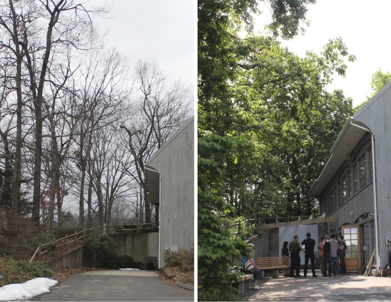Living Courtyard, before and after, Connecticut Forest and Parks Association, Rockfall, CT. May 2012.