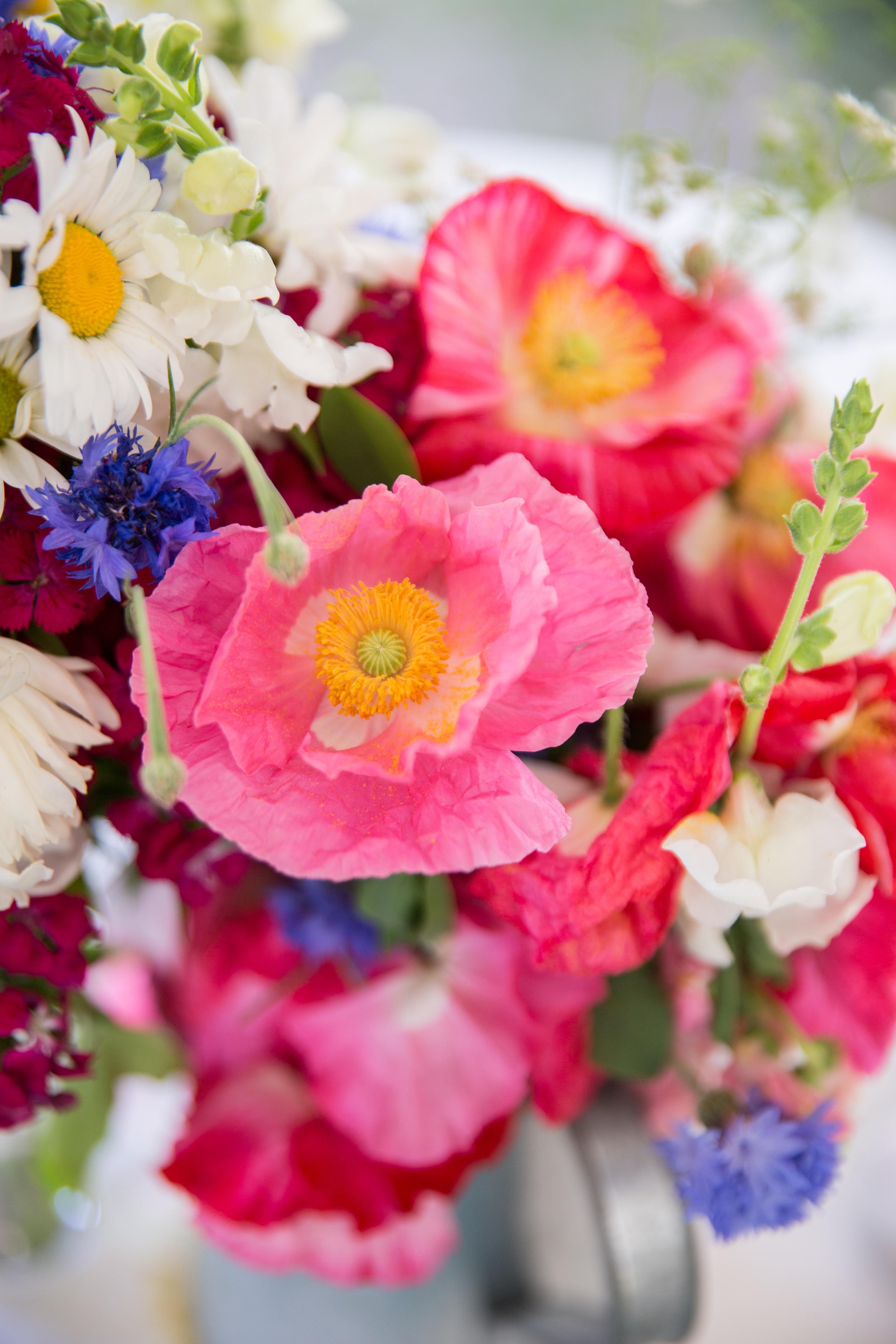 Morrison_Wedding-144.jpg