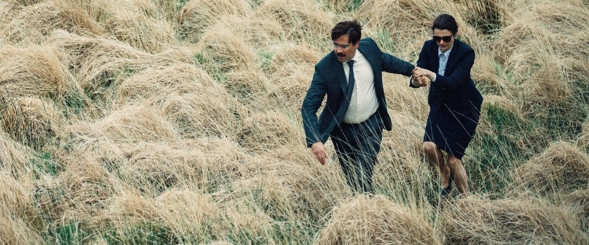 "2016: Honorable Mention ""The Lobster"""