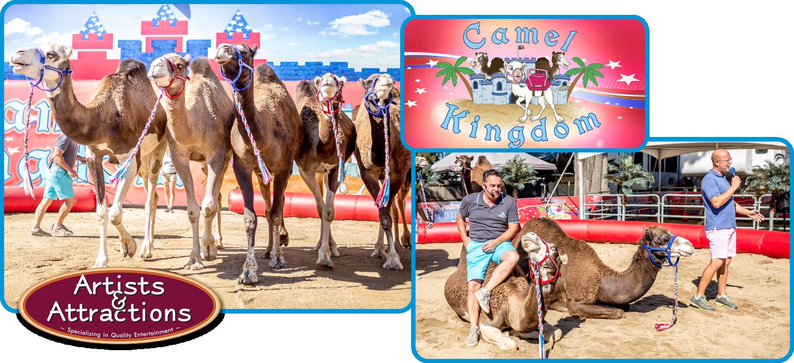 Camel Kingdom A&A.png