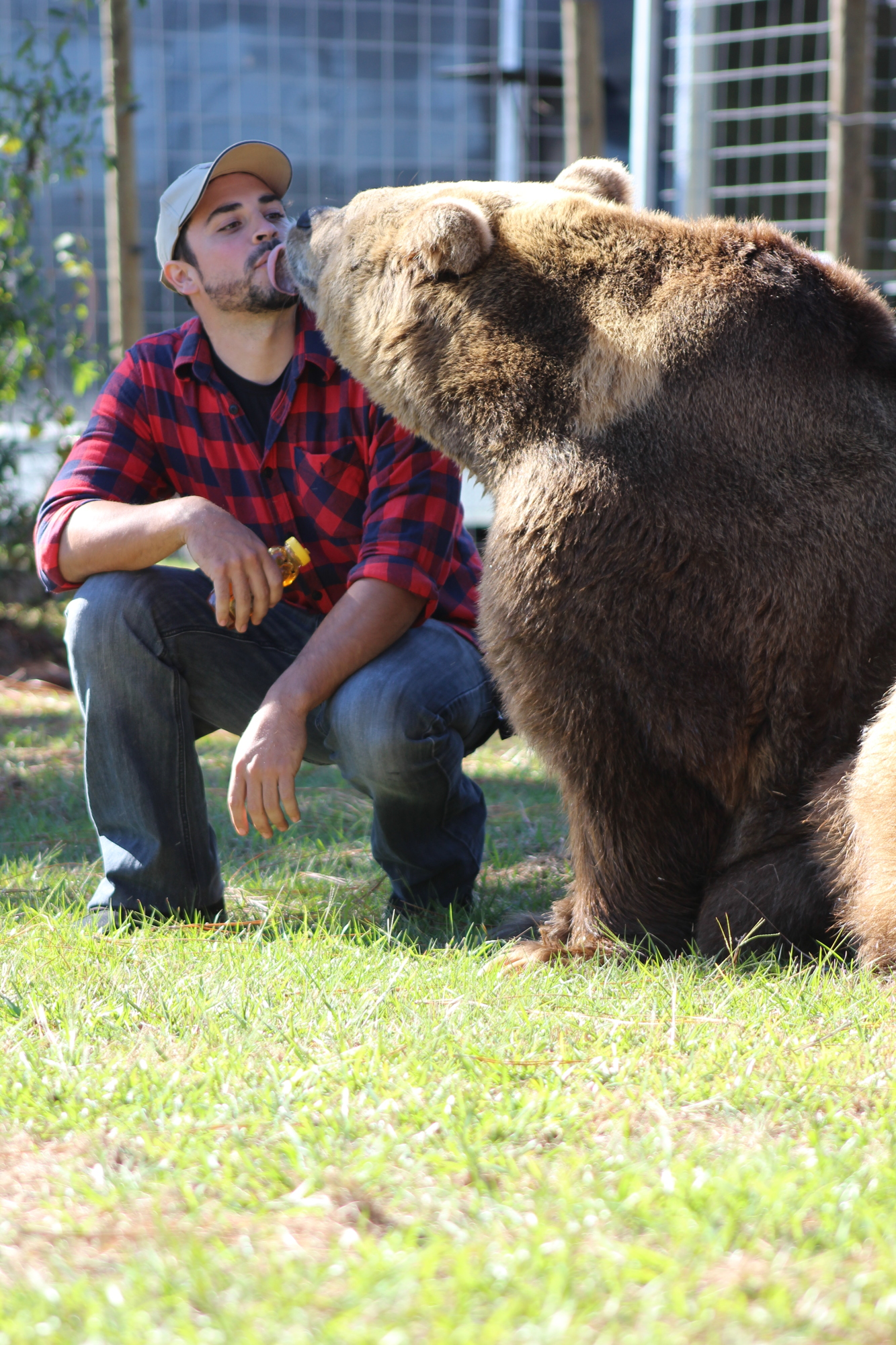 Bears of Bearadise Ranch