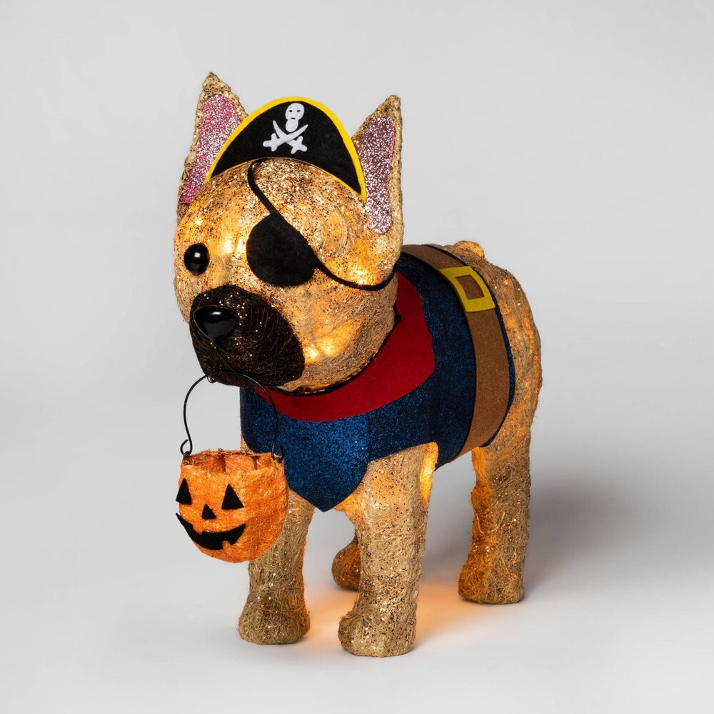 Target Halloween Pirate Dog