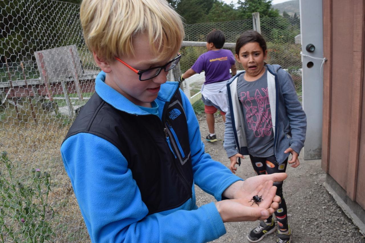 Ryker V. finds a beetle to Sofia's dismay.