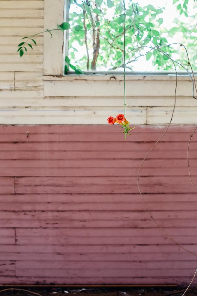 Picher, Oklahoma - online - 26.jpg