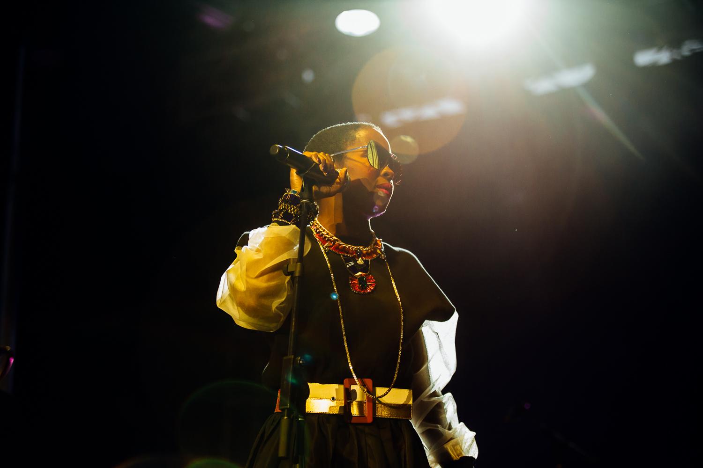 Lauryn Hill - 4 - Loufest - Pitch.jpg