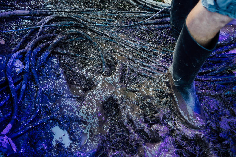 mud - Loufest - Pitch.jpg