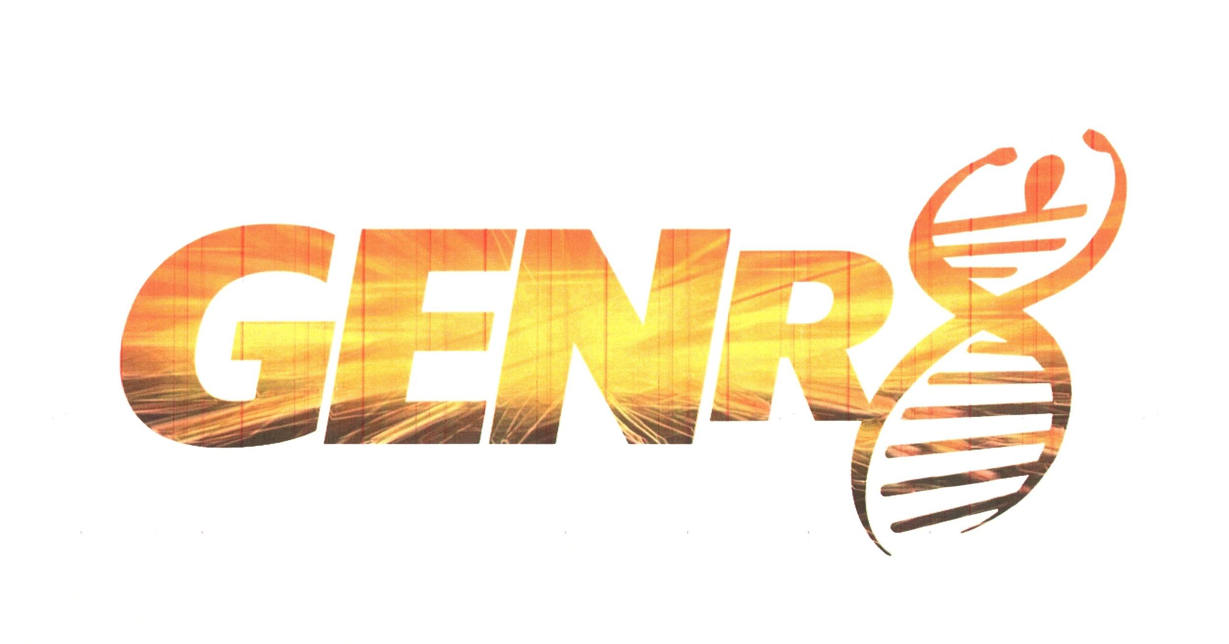 genr8speed.com