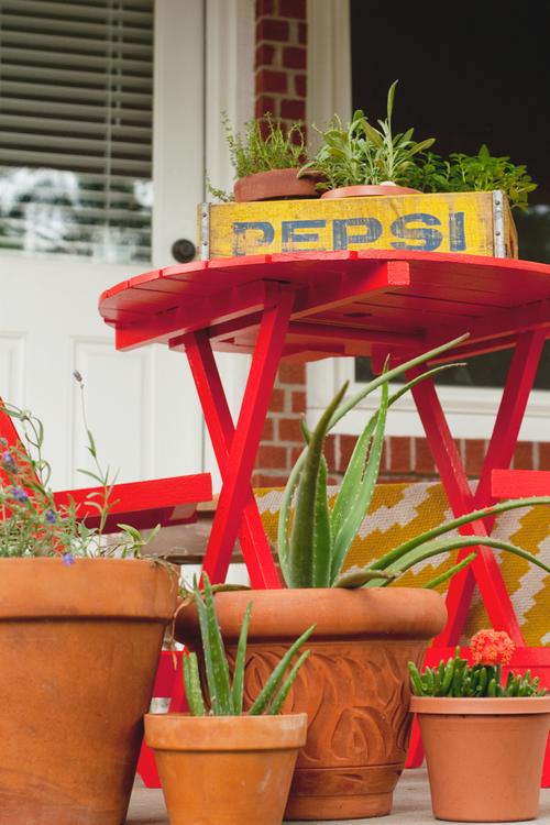 Vintage Pepsi Crate with Garden Plants