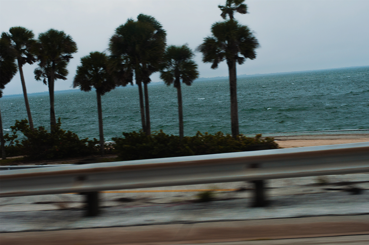 Tampa Bay (from Car)