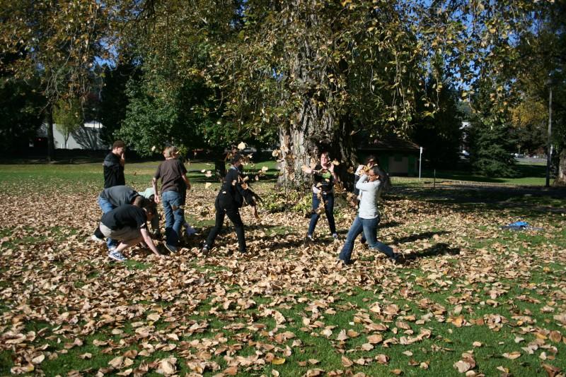Leaf Fight!