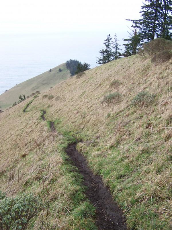 A hike