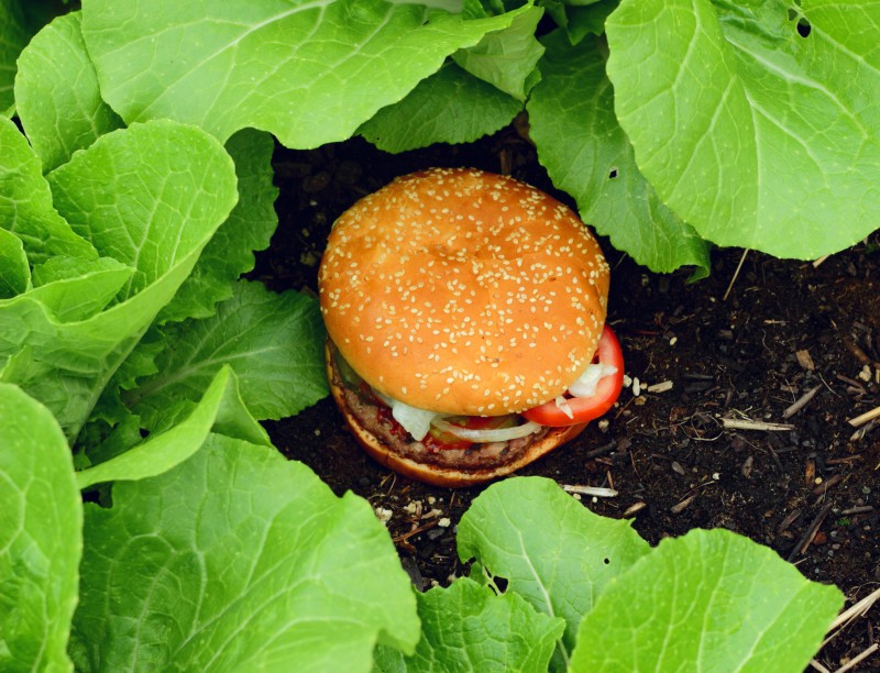 McDonald's Doesn't Grow in Your Garden