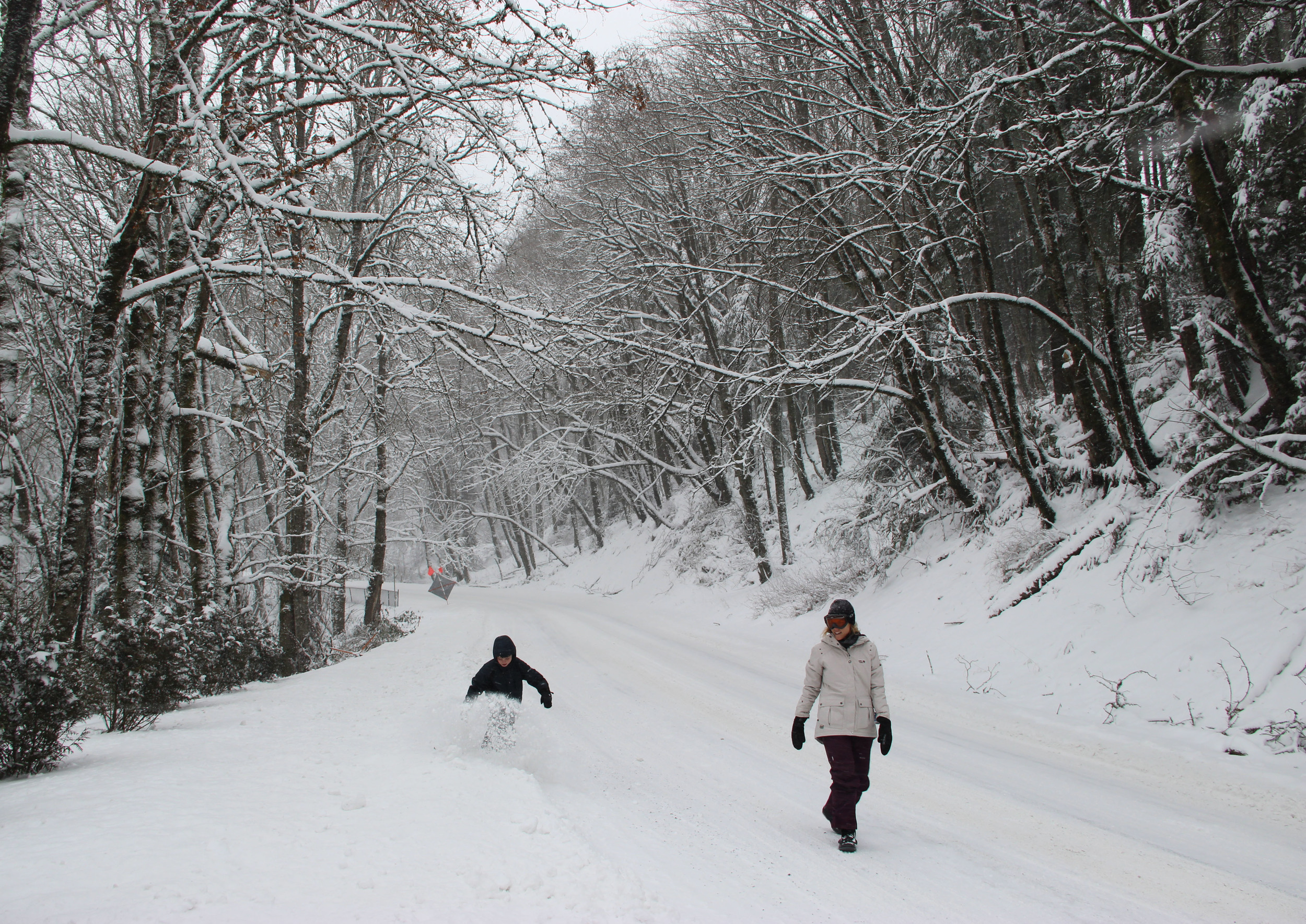 Snow Walk: Staying Healthy Doesn't Take a Snow Day
