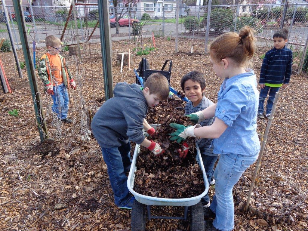 Kids get their hands dirtyin the Lower Columbia School Gardens.