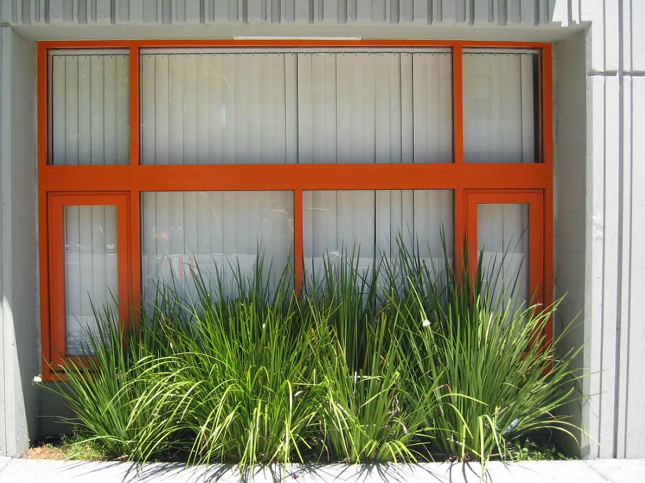 Urban garden window