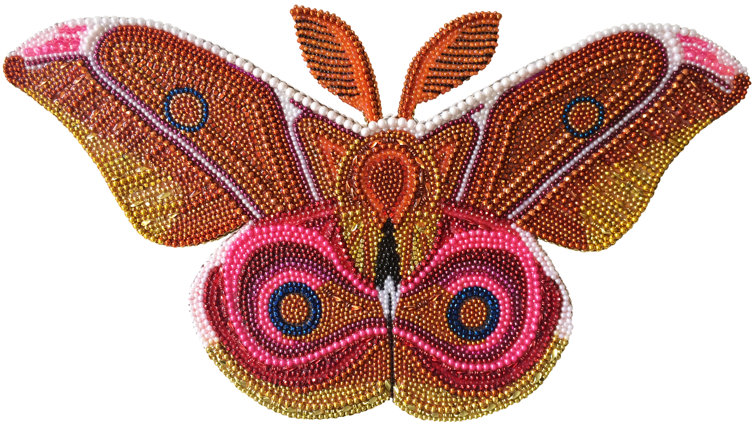 milk moth