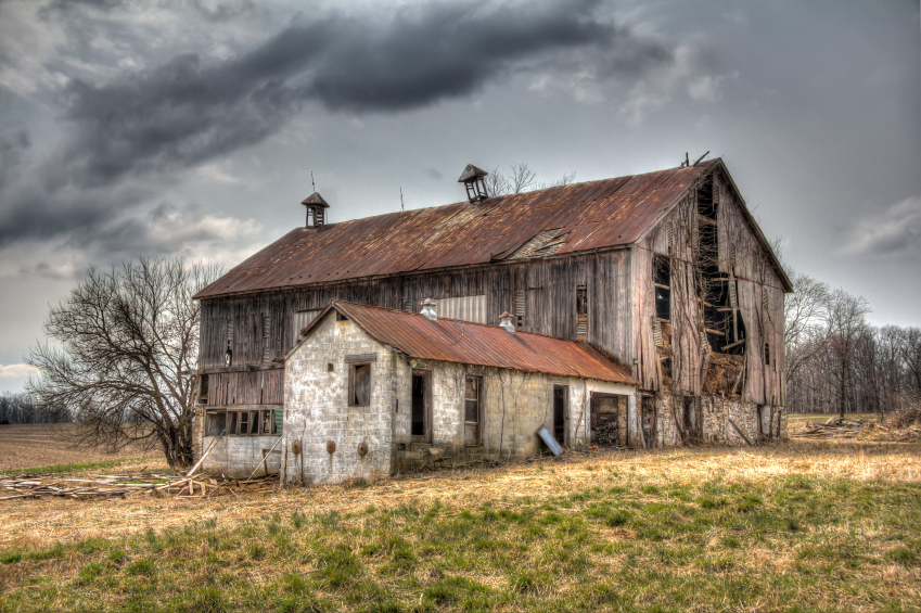 The Minnesota barn where plants and animals met in an emergency session of the BioCongress