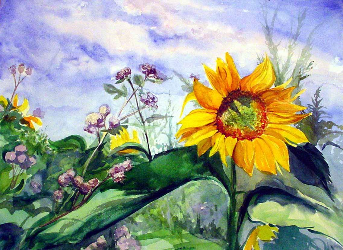 Slovakian Sunflower_sm.jpg