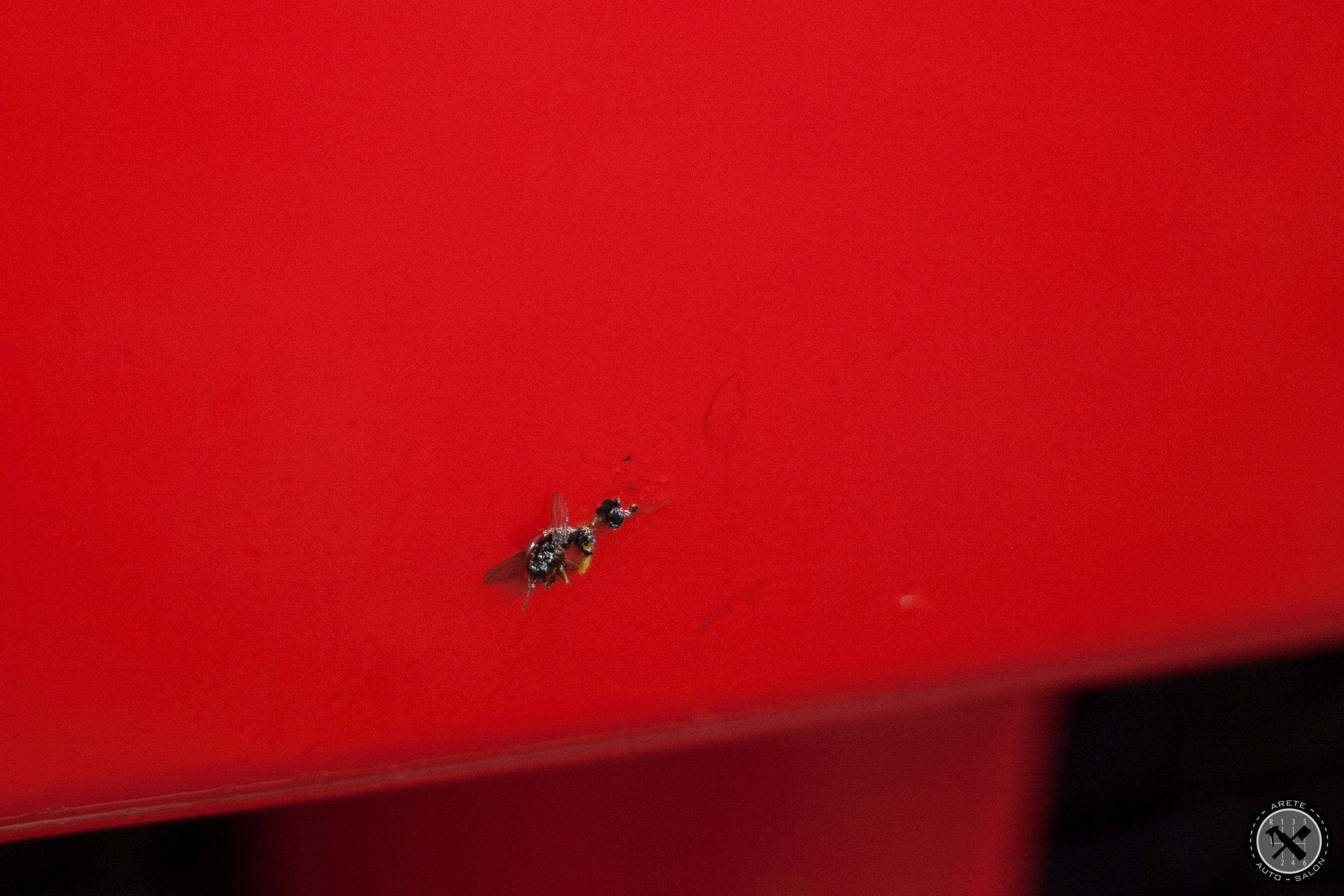 Iron-X also effectively loosens bio contamination such as bug strikes.