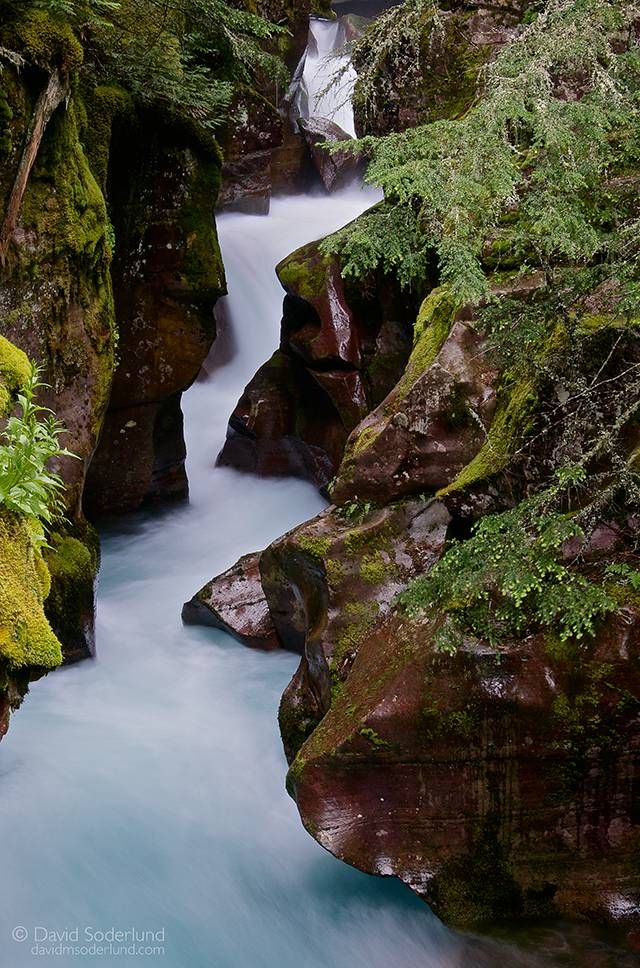 Avalanche Creek, Glacier NP