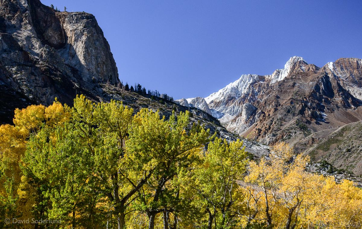 Fall color along McGee Creek