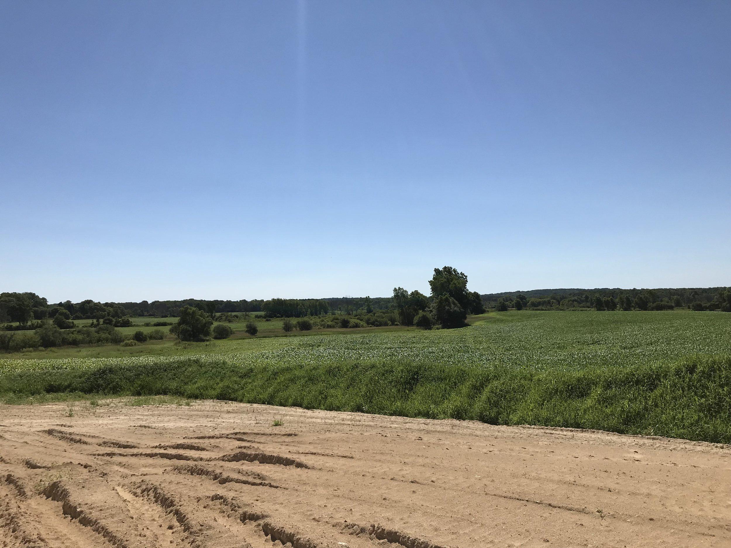 Hunters Trail View.jpg