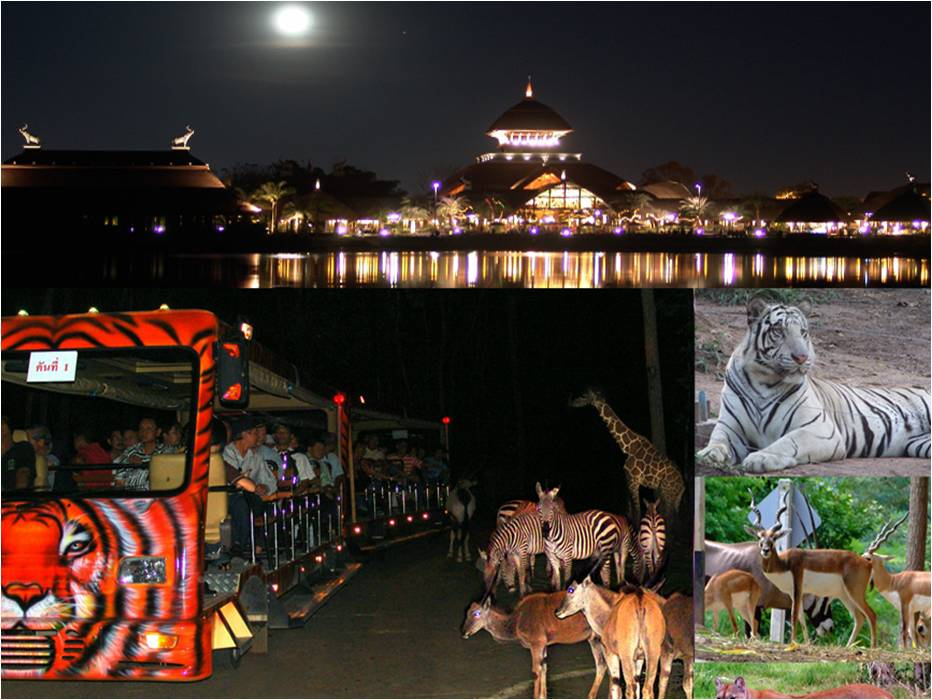 Chiangmai Night Safari.jpg