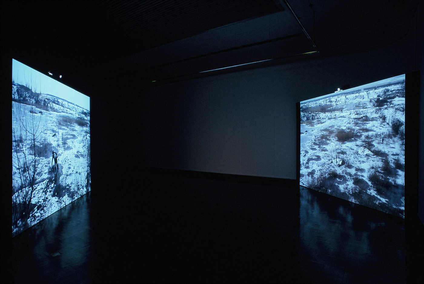 Mona Vatamanu & Florin Tudor   Vacaresti , 2003 double channel color video with sound duration 22:26 installation view