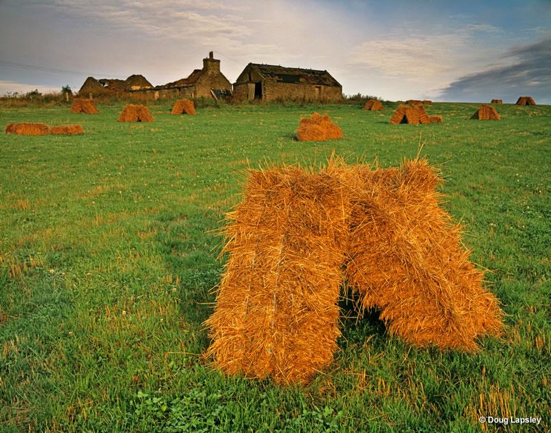 Farm at Gears 5x4 - Orkney mainland