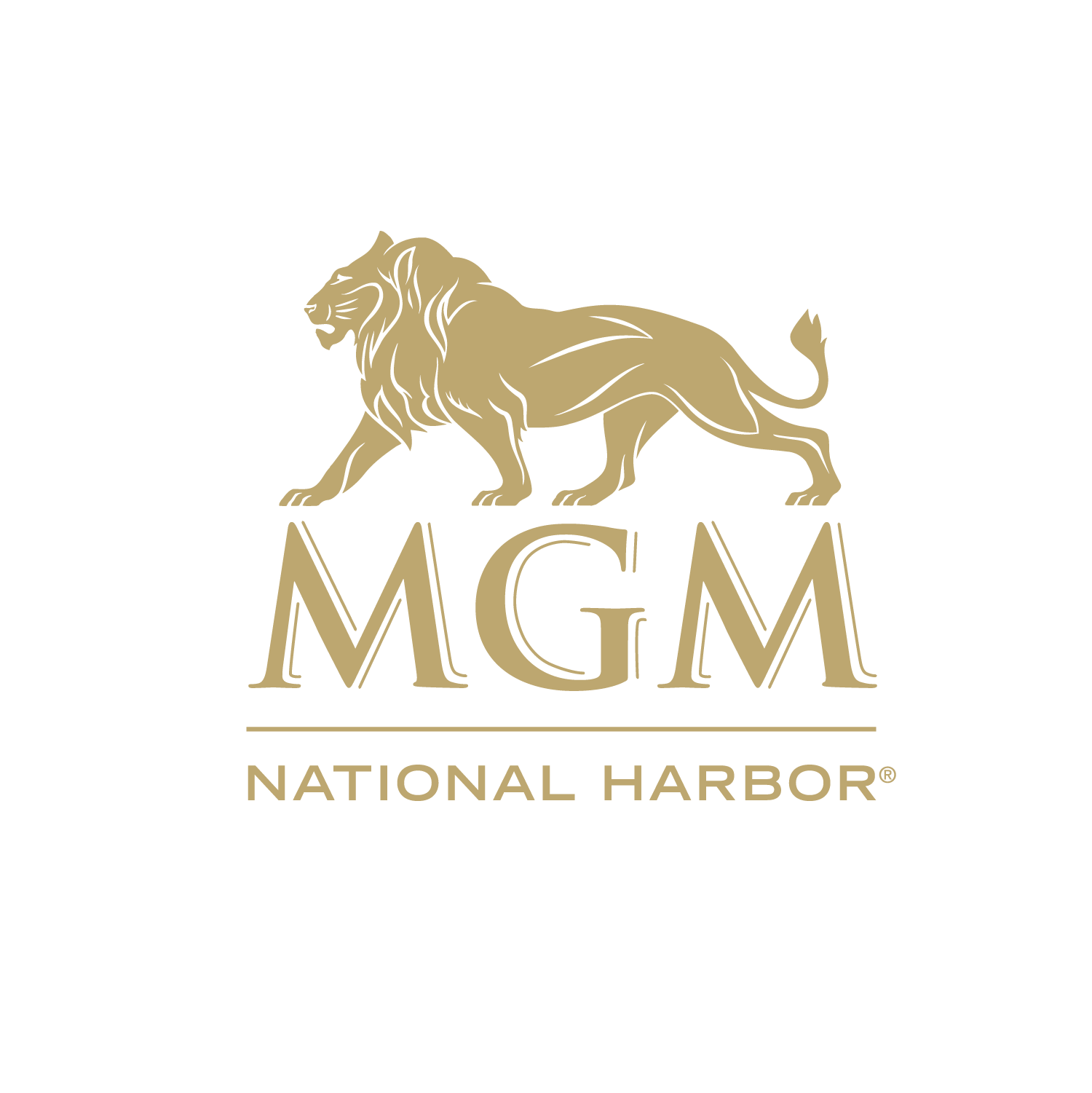 MGM NH 540 Lion.png